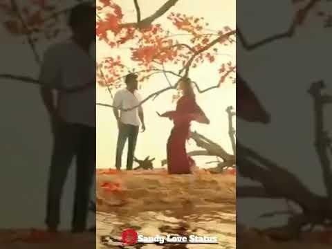 ngk---surya-_-anbe-peranbe-💞-full-screen-video-tamil-whatsaap-status-💕-sandy-love-status-💕