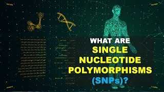 SNPs - Single Nucleotide Polymorphism (Better Explained)
