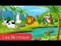 تعليم اسماء الحيوانات باللغة الفرنسية للاطفال apprendre les animaux pour les petits enfants