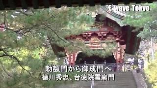 ◆徳川将軍家霊廟調査 狭山山不動寺 台徳院霊廟他 E-wave Tokyo