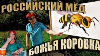 Божья Коровка «Российский мёд»