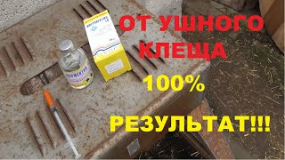 100% средство от ушного клеща и глистов у кроликов///зимние мухи