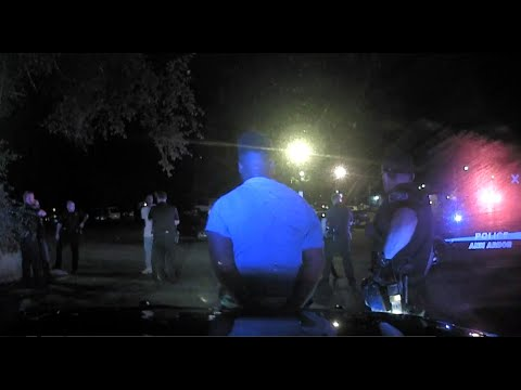 Ann Arbor police dashcam video shows officers' response to altercation on First Street