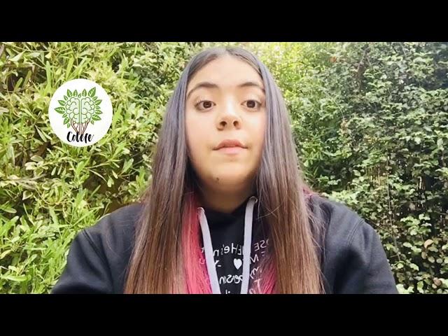 COLEFE - Pumahue Curauma