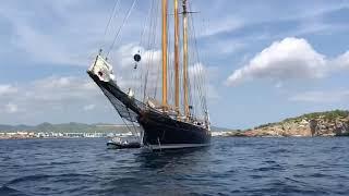 Shenandoah of Sark: sailing like a king