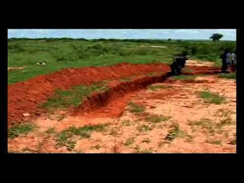 Land restauration in Landu village (Senegal).wmv
