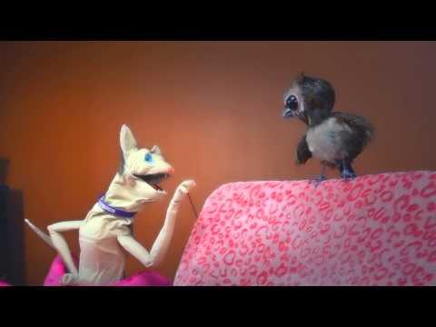 The Love Me Cat   Kickstarter Video