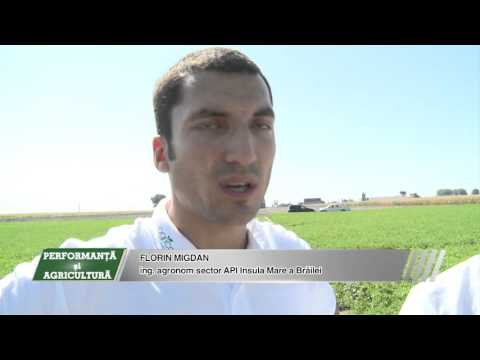 AGRICOST - Secretele lucernei - 25 septembrie 2015 - BT Video Productie VIDEO