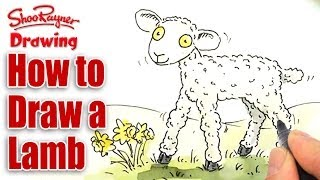 How to draw a cute cartoon lamb