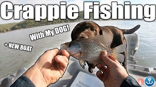 Fishing for Food in my New Boat! (Crappie Catch and Cook)