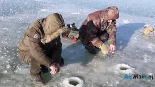 ''Ак Жайык'': На Уралі лід досяг 10 сантиметрів