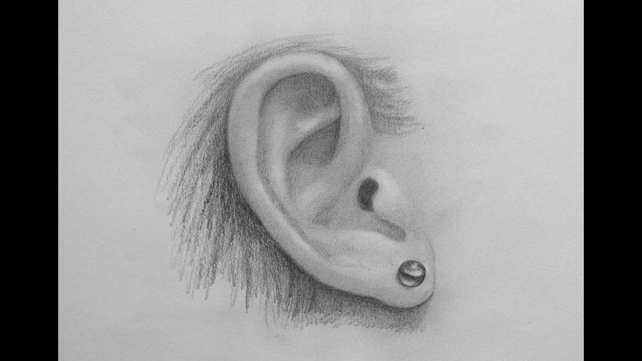 How to Draw a Realistic Ear - YouTube
