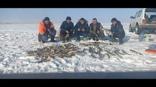 Озеро Зайсан 1 2 марта 2020 года Рыбалка на жерлицы Рыбалка в Казахстане Отличный отдых