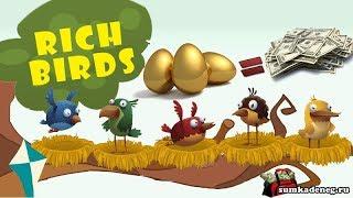 Rich birds (рич бердс) Лохотрон или заработок ? | Обзор