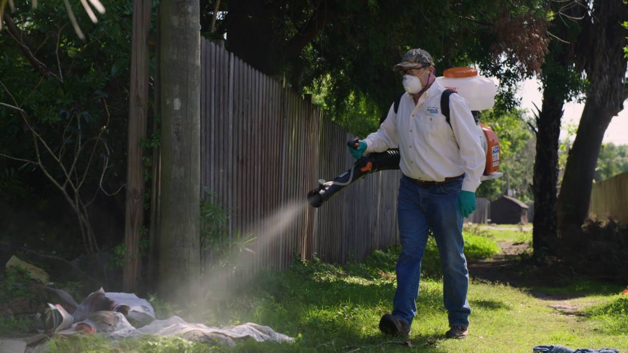 chp 6 final backyard spraying for container mosquitoes