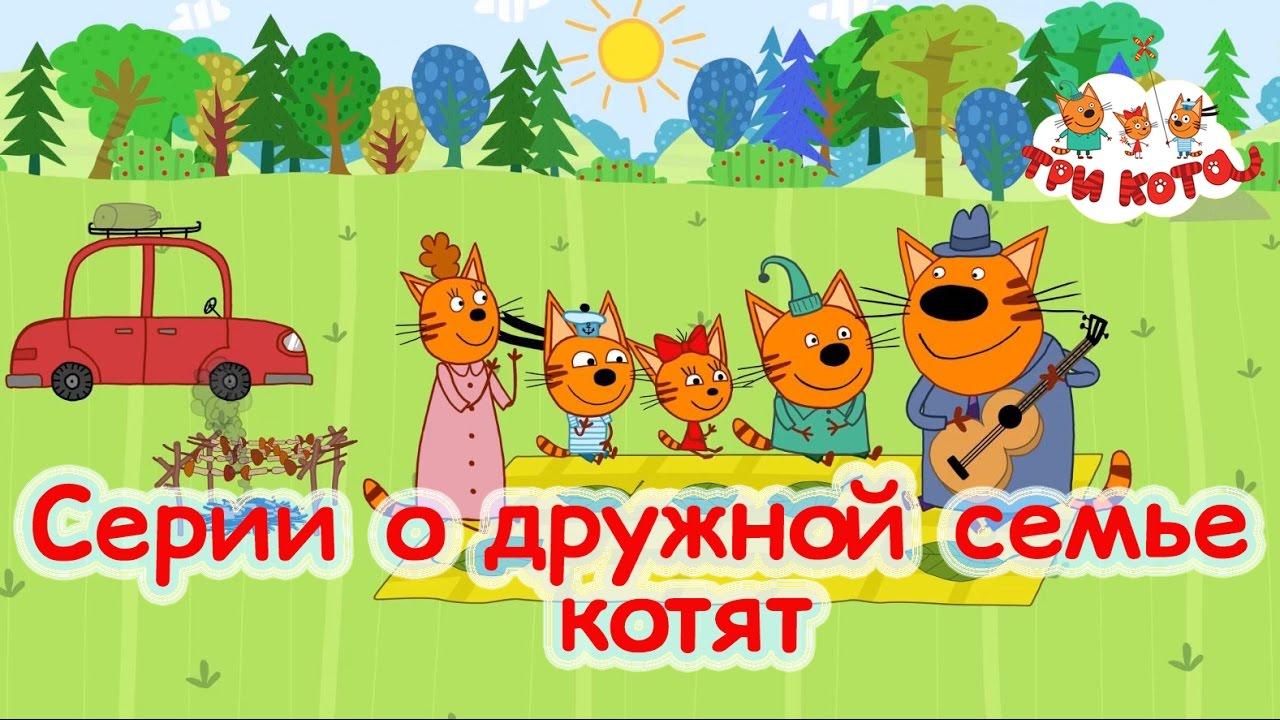 Видео про трех котов
