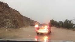 Wasserfluten in Israels Wüste