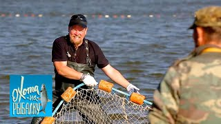 Судак   Охота на рыбалку  с Вилле Хаапасало