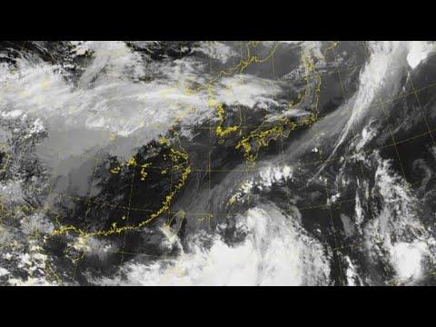 600mm 물폭탄 태풍 '타파'…일요일 최대고비 / 연합뉴스TV (YonhapnewsTV)