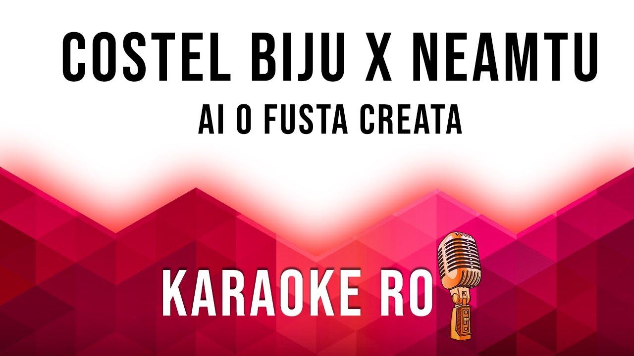 AI O FUSTA CREATA [ Official Karaoke] - Iuly Neamtu & Costel Biju