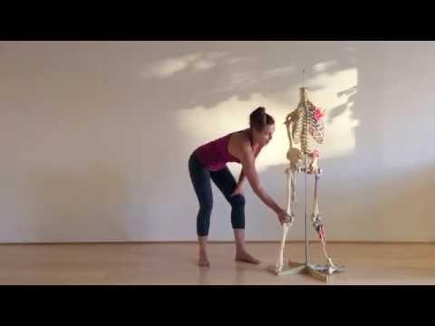 trikonasana anatomy and alignment part 2  youtube