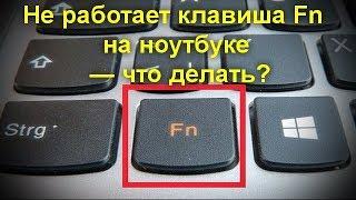 Не працює клавіша Fn на ноутбуці — що робити?