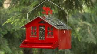 Perky-pet® Squirrel-be-gone 2 Instructional Video | Squirrel Proof Feeder