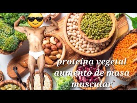 Dieta vegetariana culturismo & fitness