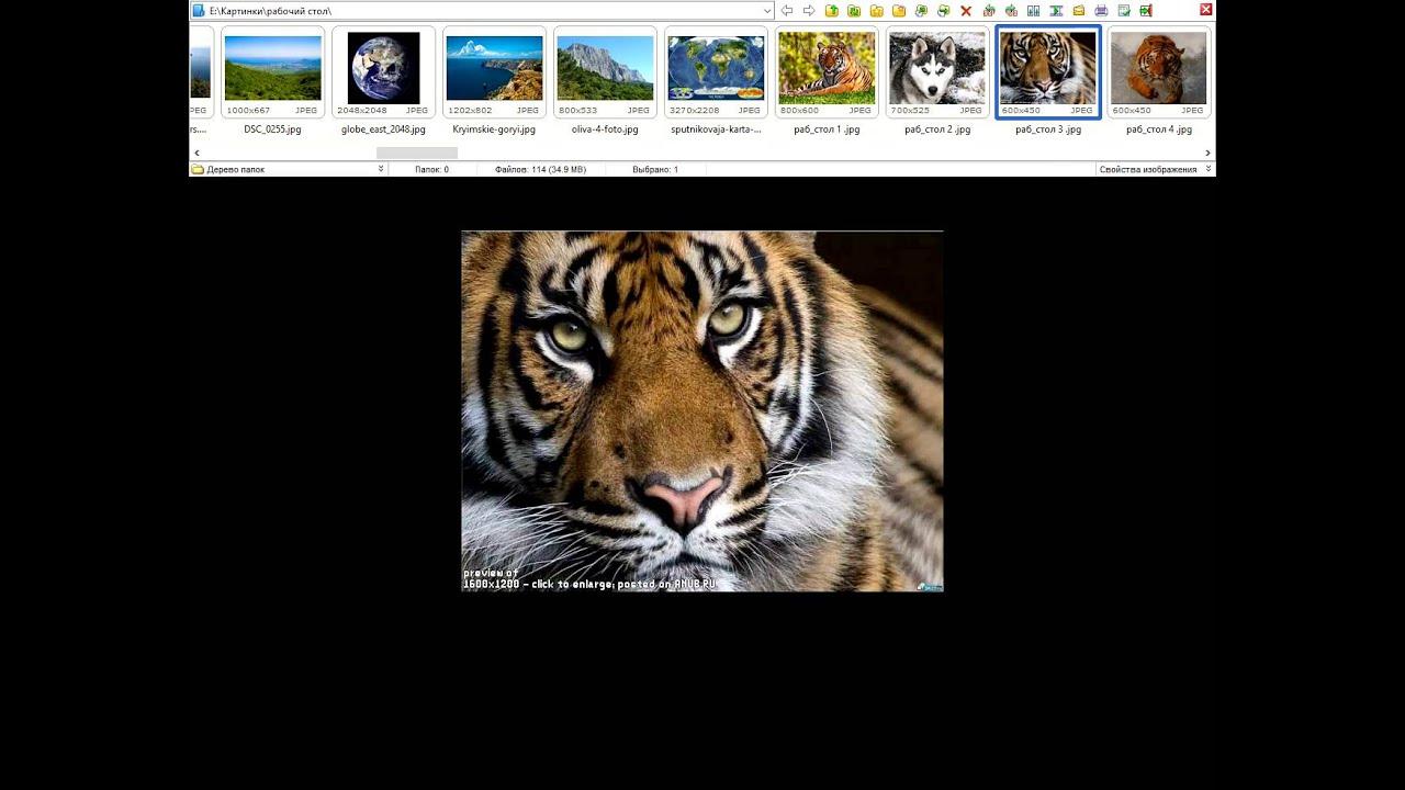 Программа для просмотра фото и картинок - YouTube