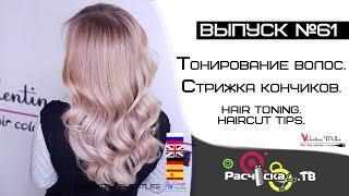 Olivia классическая линия шампунь для сухих волос отзывы