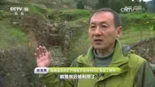 《地理·中国》栏目以地质科考为线索,以普及地理学知识为宗旨,展示我国...