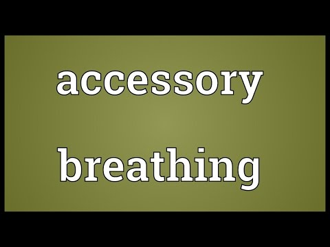 Accessory breathing Meaning