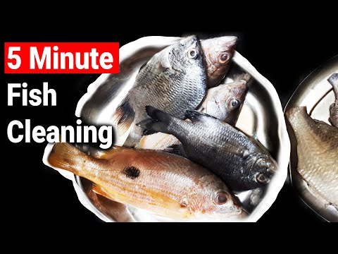 How To Clean Fish In 5 Minutes | Very Simple Technique [Unique Method To Clean Faster At Home]