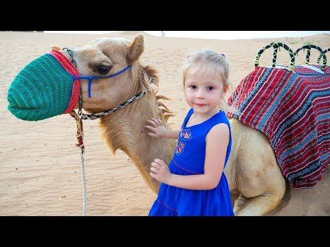 Влог: путешествие по пустыне, Сафари в Дубаи  / Safari in desert Dubai