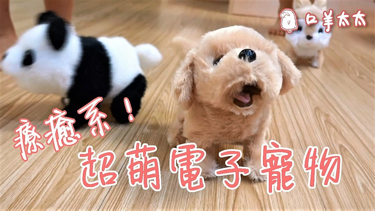開箱超萌寵!IWAYA日本暢銷超人氣電子寵物