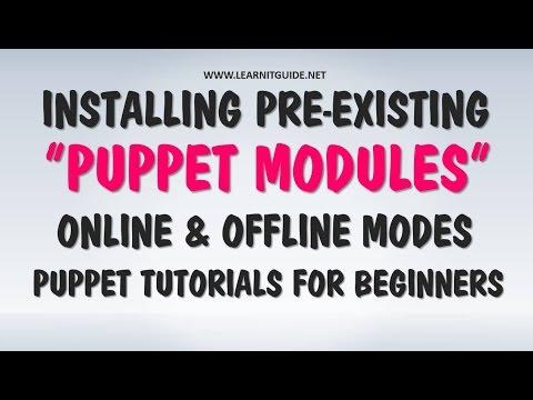 Installing Puppet Modules Online and Offline - Puppet Tutorial for Beginners