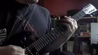 Tool - Prison Sex - Guitar Cover