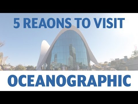 5 Reasons why you should visit Oceanographic in Valencia, Spain