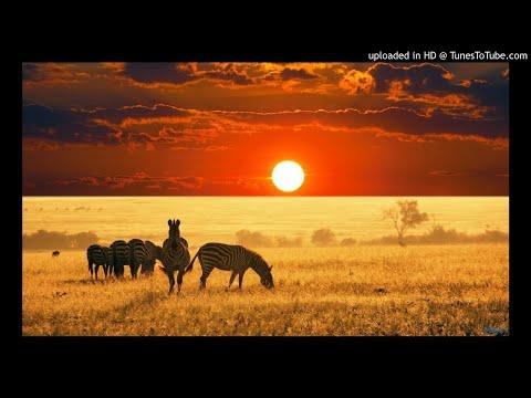 Prince Kaybee - Charlotte ft. Lady Zamar (DJ NOVA Exclusive ReMix)