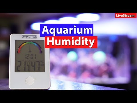 Aquarium Humidity - Dealing with moisture Levels and humidity Control in your home - prevent mold