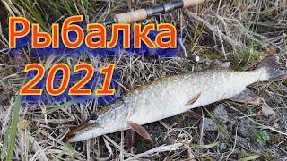 Ладожское озеро Рыбалка 2021 Ладожскоеозеро Рыбалка 2021 Щука Карелия Рыба Спиннинu