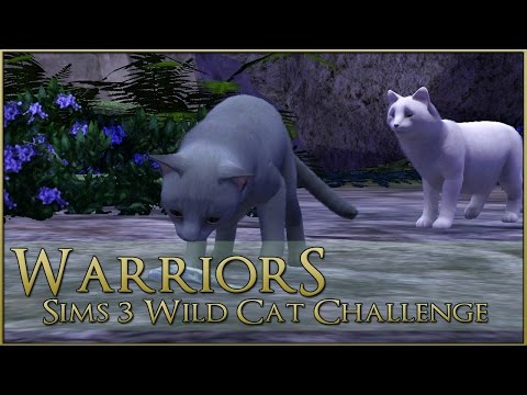 The Kits Lost at Sea || Warrior Cats Sims 3 Legacy - Episode #76