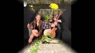 taraxacum-bestillmyheart