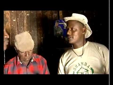 Shamba Shape-Up video on the East Africa Value Chain Project in Kenya