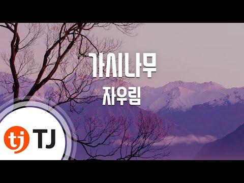 [TJ노래방] 가시나무 - 자우림 (Thorn Tree - Jaurim) / TJ Karaoke