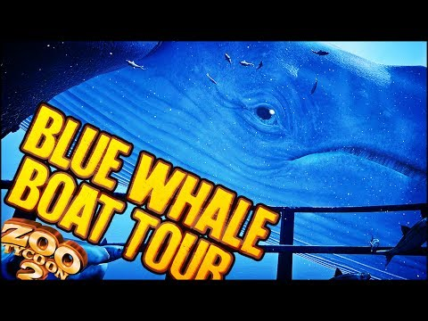 Zoo Tycoon 2: The Aquarium | BLUE WHALE BOAT TOUR (Aquarium Part 7)
