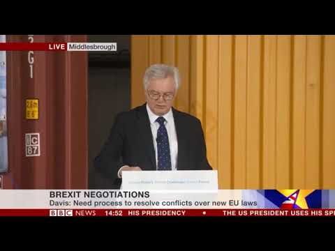 David Davis full speech on implementation period