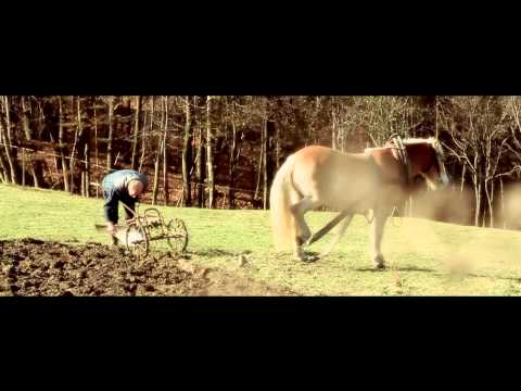 DAREBAND aj STRAM - Pod Makytú (OFICIÁLNÍ VIDEOKLIP)