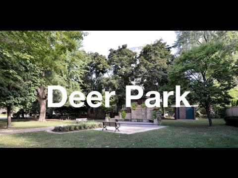 Toronto Neighbourhoods: Deer Park