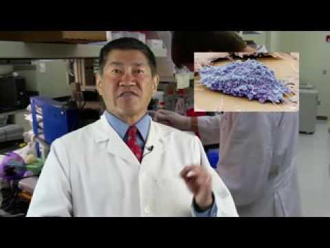 Fat Stem Cells for Knee Arthritis
